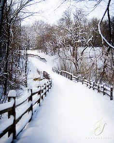 pure-snow